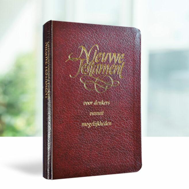 Nieuwe Testament voor denkers vanuit mogelijkheden